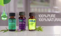 Aceite de árbol de té - Top 10 de beneficios de salud y usos