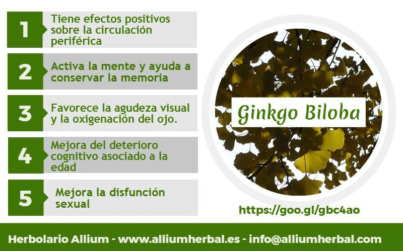 Infografía sobre el Ginkgo Biloba y sus propiedades