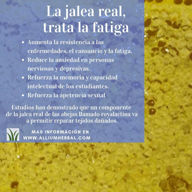 beneficios de la jalea real en la piel
