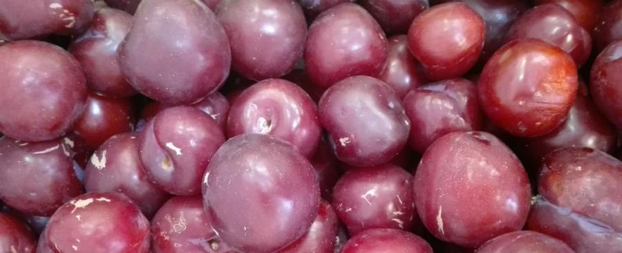 La ciruela laxante suave - Frutas diureticas y laxantes ...