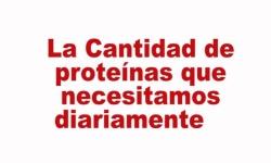 La cantidad de proteínas diarias ofrecido por Ana María Lajusticia
